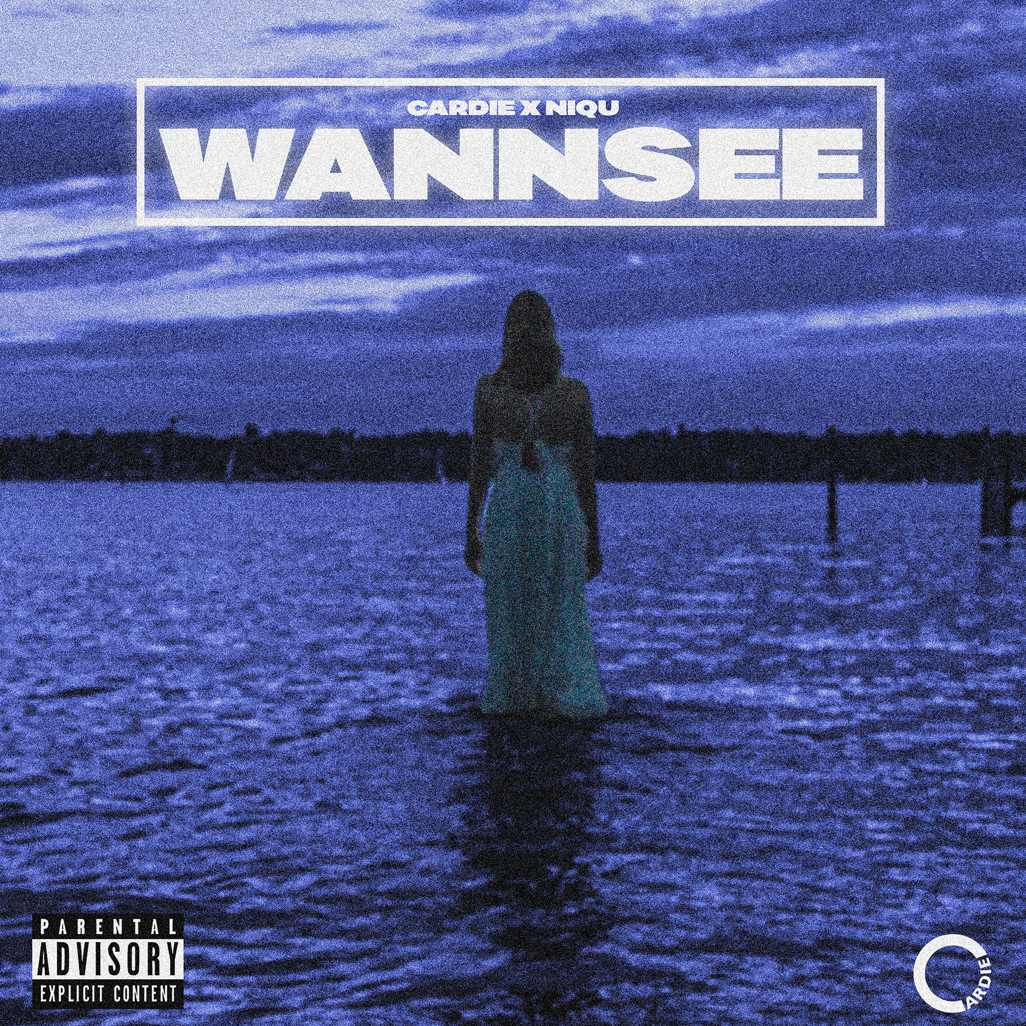 Wannsee Cover